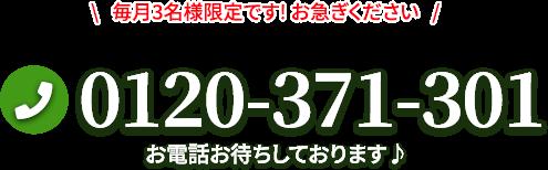 0120-371-301